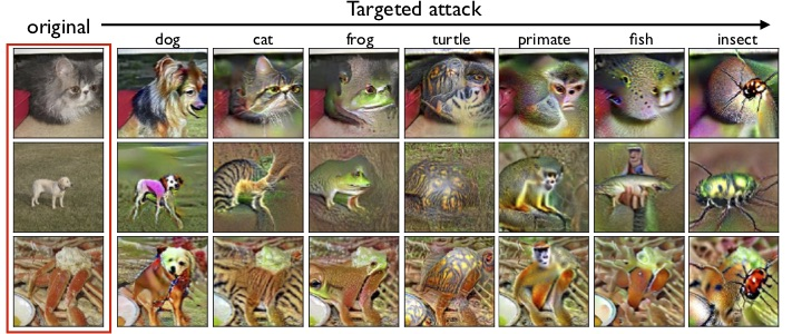 Targeted adversarial examples for a robust model